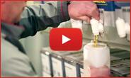 -Aceite Ravenol- el aceite de motor alemán Ravenol españa